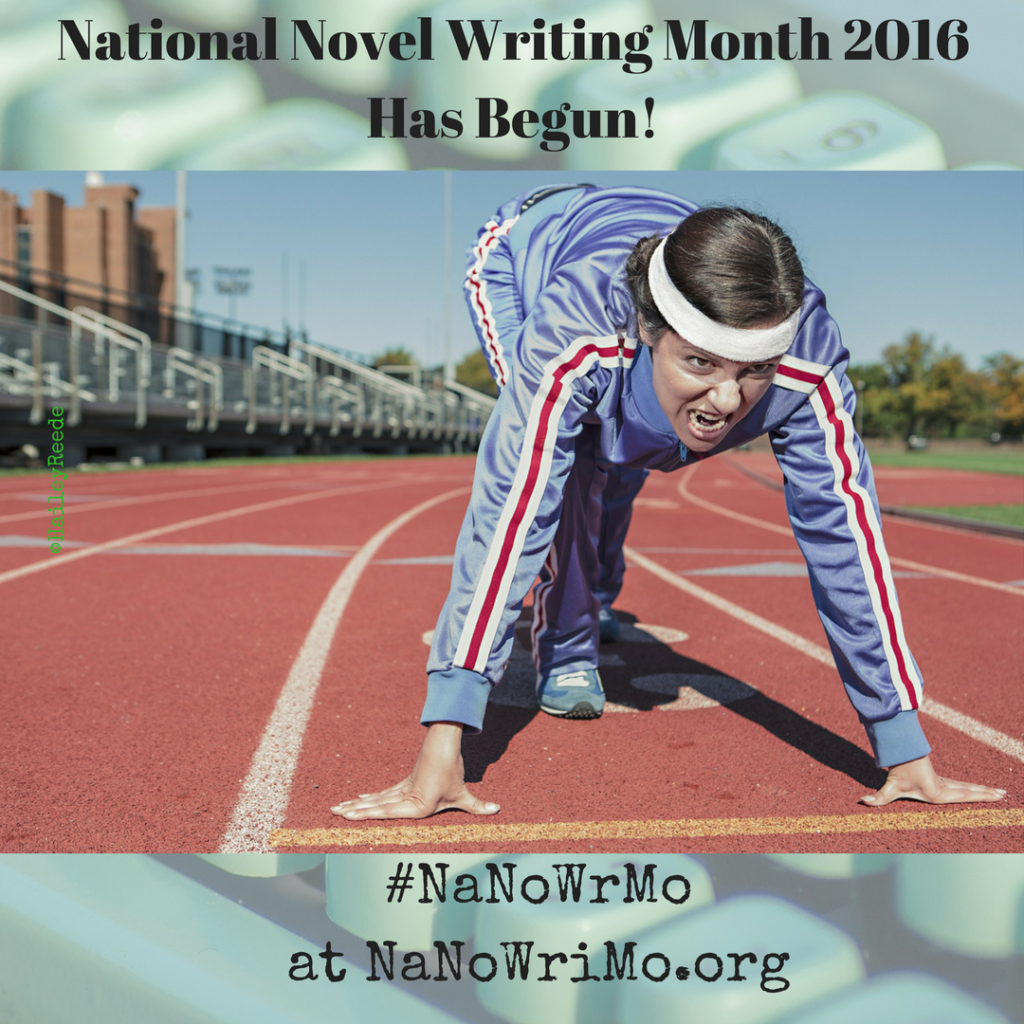 National Novel Writing Month Begins ~ as does National Blog Posting Month!