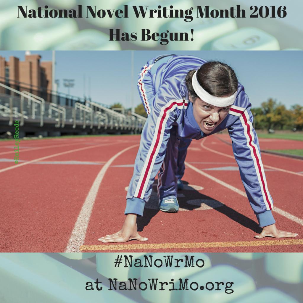 National Novel Writing Month Begins ~ as does National Blog Posting Month!