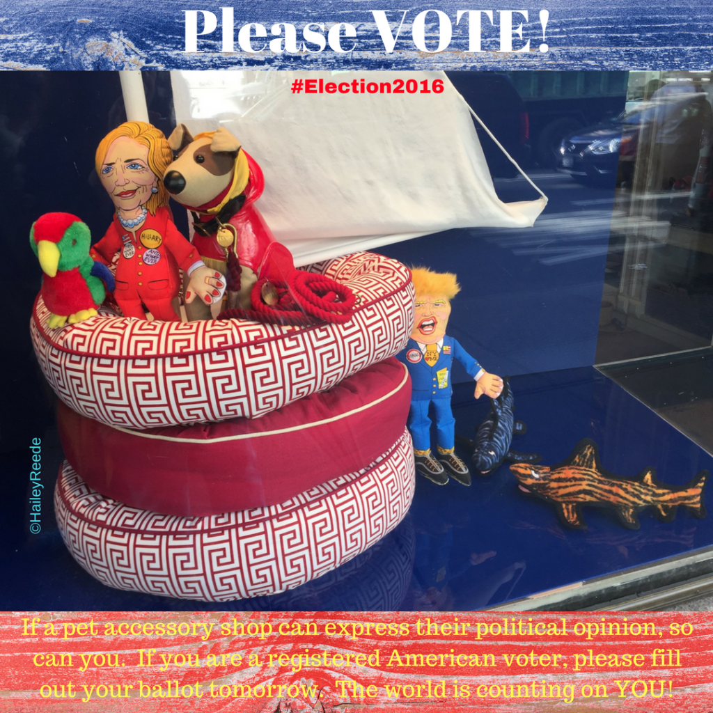 A pet accessory shop on Lexington Avenue in New York City weighs in on the 2016 Presidential election.